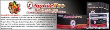 banner-agaricpro